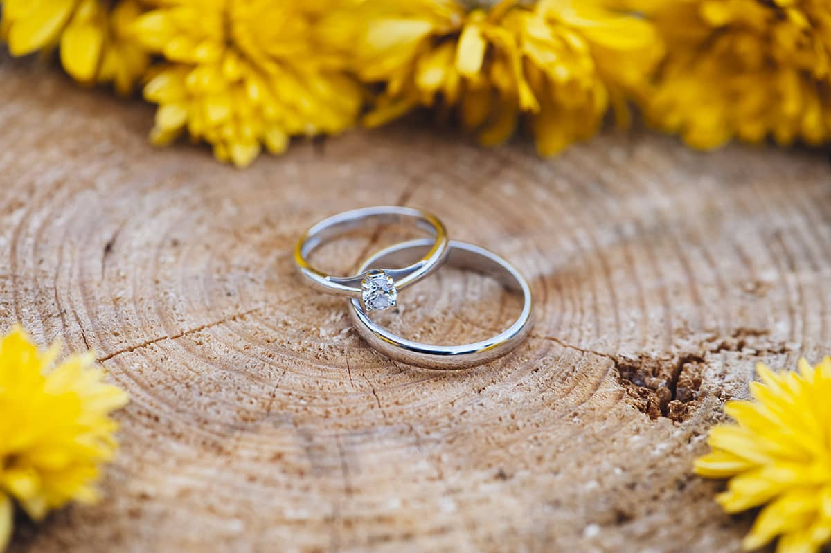 2 rings on top a wooden base